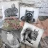 Fotoprinkt Kissen Eichhörnchen, Hase, Vogel, Waschbär, Neu Alle